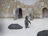 20170923桐生が岡動物園blog02.jpg