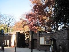 20171202六義園blog02.jpg