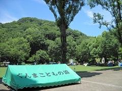 20180624太田金山城跡blog08.jpg